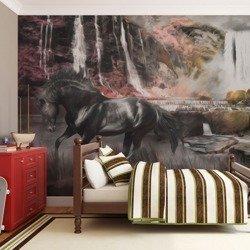 Fototapeta - Czarny koń przy wodospadzie