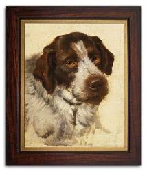 Obraz - Dogs&Cats 26x31cm