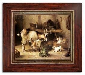 Obraz - Dogs&Cats 36x31cm