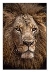 "Obraz ""Wild Nature"" reprodukcja 60x90cm"