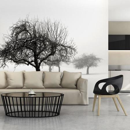Fototapeta - Zima: drzewa
