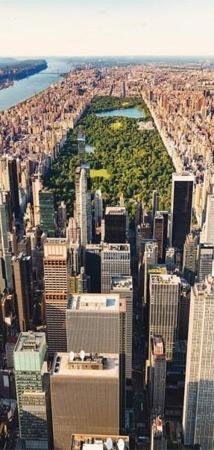 Fototapeta na drzwi - Central Park