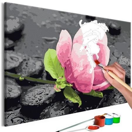 Obraz do samodzielnego malowania - Różowy kwiat i kamienie